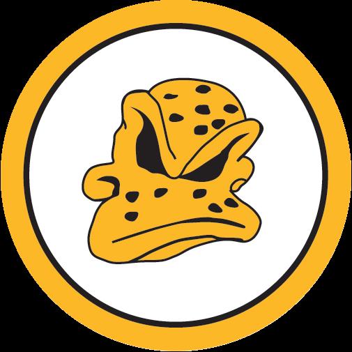 Dundee Ducks Logo